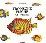 Tropische Fische Ostindiens von Samuel Fallours für 9,95€