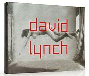 David Lynch. Dark Splendor von Werner Spies Hg. für 24,95€