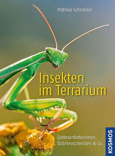 Insekten im Terrarium. Gottesanbeterinnen, Stabheuschrecken & Co. von Mathias Schneider für 4,95€