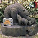 40 Years Bear Family Records Limited Edition von Verschiedene Interpreten für 39,99€