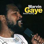 Sexual Healing von Marvin Gaye für 2,99€