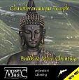 Mystic Animals - Buddhist Main Chanting von Verschiedene Interpreten für 2,99€